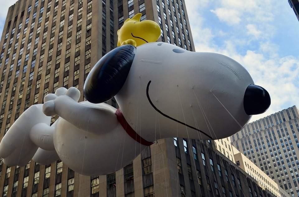 Hunde aus Film und Fernsehen Teil 4: Snoopy