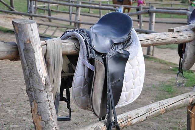 Schabracke für den besonderen Auftritt des Pferdes